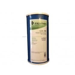 "Pentek GAC-BB Big Blue Granular Carbon Water Filter 10"""
