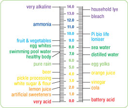 Alkaline PH level Graph